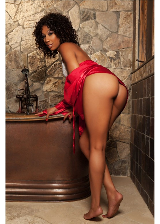 Мастурбатор Fleshlight Girls: Misty Stone Forbidden